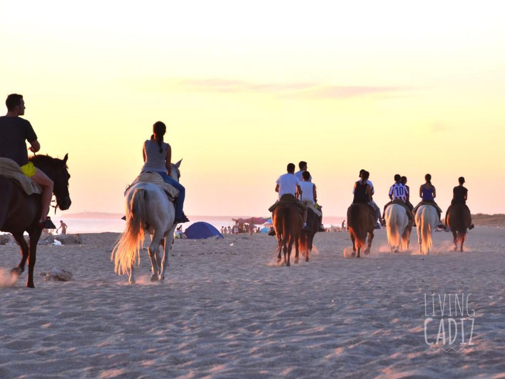 Beach horse ride