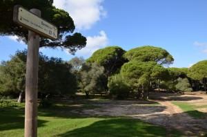 Parque Natural de la Breña