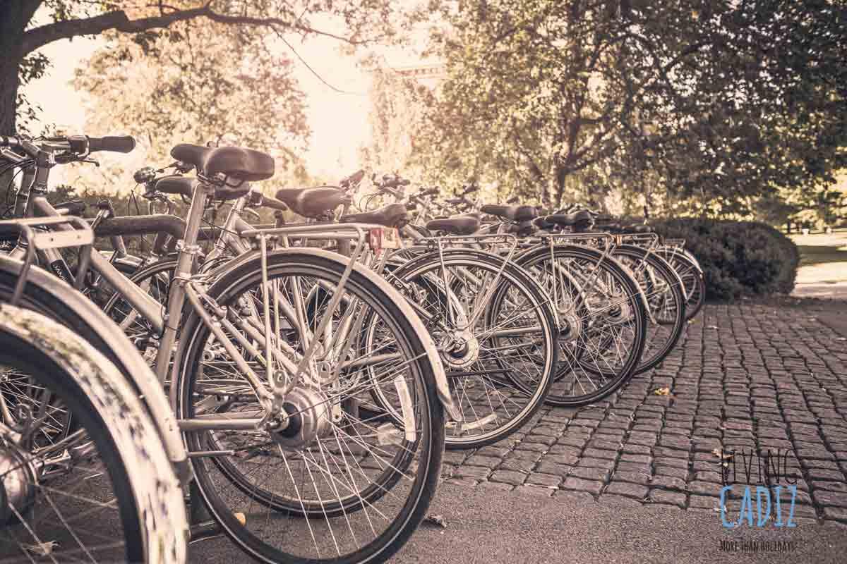 Rent a bike Conil