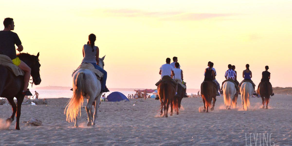 Paseo en caballo por la playa